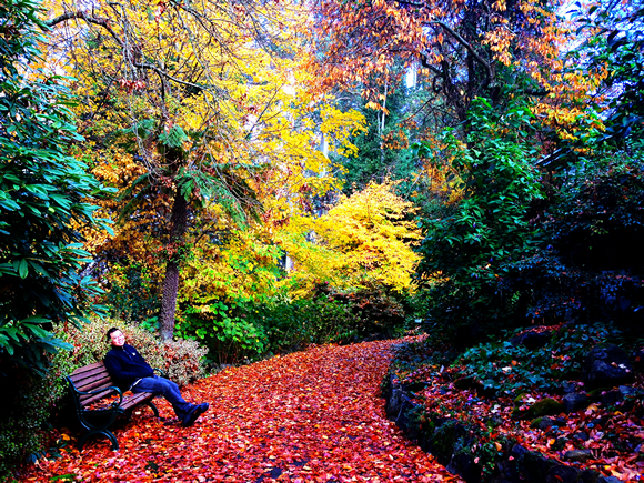 melbourne autumn