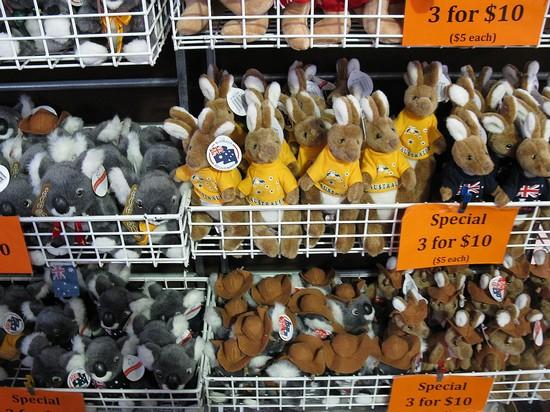 kangaroo soft toys